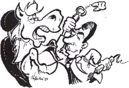 Soins dentaires aux chevaux